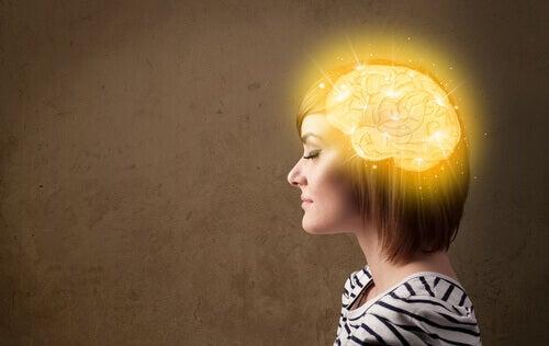 La mente cuántica: cómo podemos transformar nuestra realidad