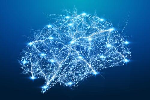 5 instrumentos de investigación en neurociencia