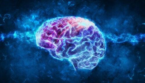 Psicofisiología: ¿qué es?