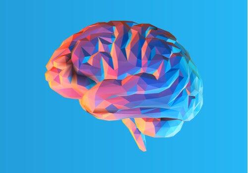 La teoría modular de la mente