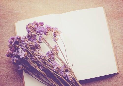 Notas de suicidio: ¿qué revelan las últimas palabras de una persona?