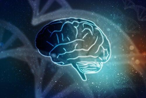 El cerebro puede resucitar sin el cuerpo