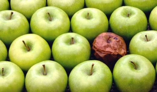 La teoría de la manzana podrida: el efecto del mal compañero de trabajo