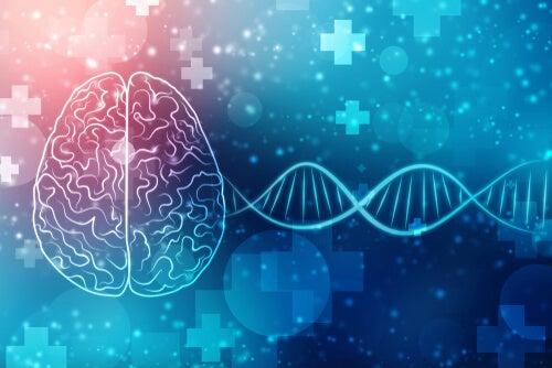 En qué consiste la genética conductual