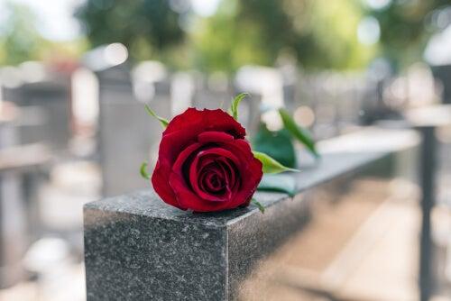 Reflexiones de funeral