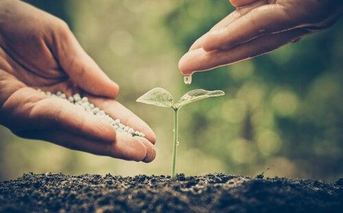 Cuáles son los valores ambientales